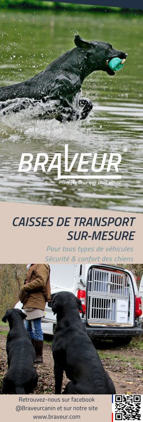 BRAVEUR CAISSES DE TRANSPORT