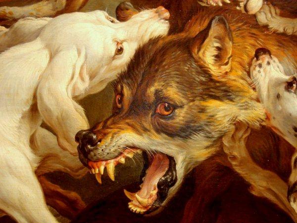 3. Chiens de chasse au loup