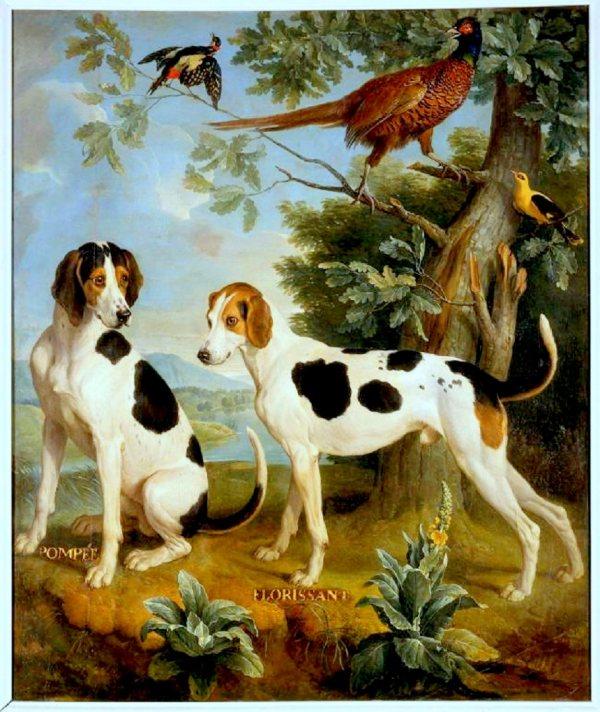 7. les chiens de Louis XV Pompee et Florissant