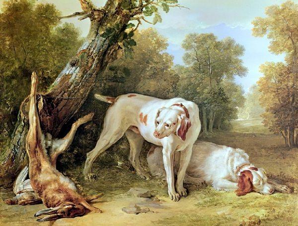 6. Scene des deux chiens epuises.