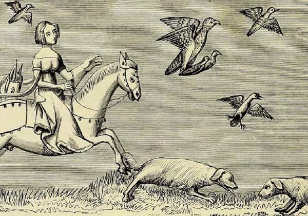 Les chiens de la fauconnière